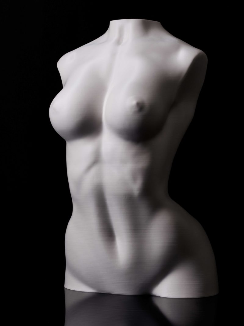 Torso woman large